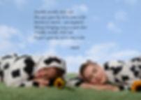 baby pic 2 cows.jpg