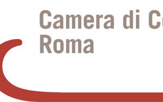 PROGETTI REALIZZATI DA FEDERLAZIO CON IL CONTRIBUTO DELLA CAMERA DI COMMERCIO DI ROMA