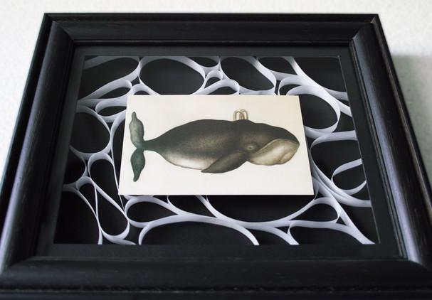 鯨のポストカード