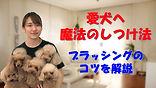 YouTube87.jpg