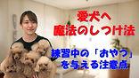 YouTube78.jpg