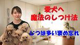 YouTube89.jpg