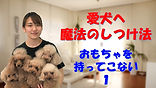YouTube31.jpg