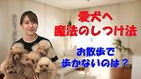YouTube22.jpg