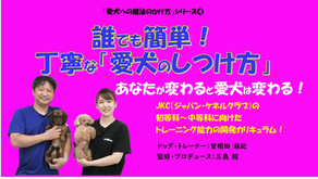 基礎から学べるドッグ・トレーニングのオンライン講座 新発売!