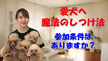 YouTube12.jpg