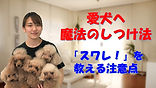 YouTube80.jpg