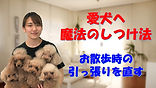 YouTube21.jpg