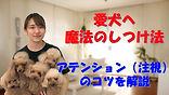 YouTube94.jpg