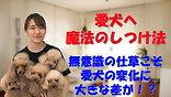YouTube88.jpg