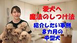 YouTube53.jpg