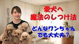 YouTube7.jpg