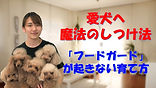 YouTube84.jpg