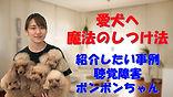 YouTube46.jpg