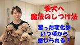 YouTube18.jpg