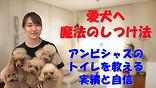 YouTube50.jpg