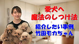YouTube47.jpg