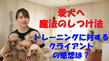YouTube39.jpg