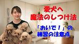 YouTube79.jpg