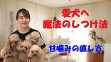 YouTube20.jpg