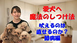 YouTube19.jpg
