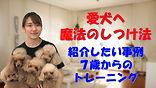 YouTube51.jpg