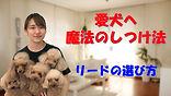 YouTube75.jpg