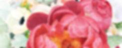 bannerwebsite5.jpg