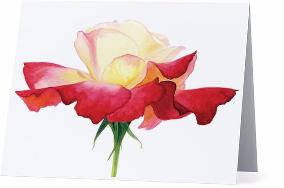 Double Delight Red Rose Card