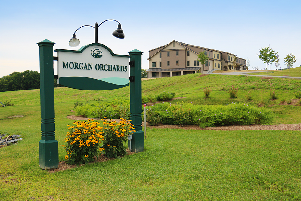 Morgan Orchards