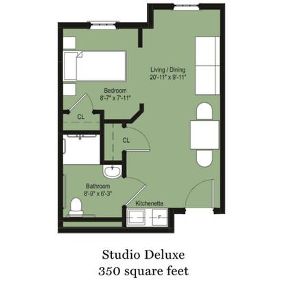 Studio Deluxe