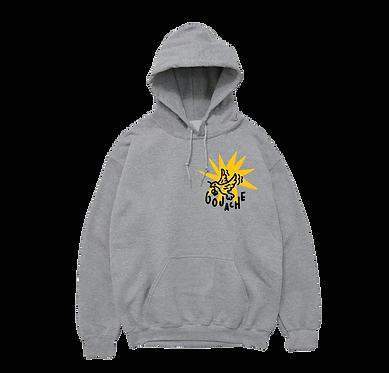 RISE grey hoodie