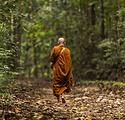 MonkSriLanka.png