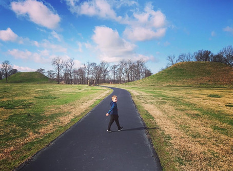 Toltec Mounds and the Plantation Agriculture Museum