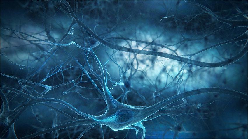 neuronuul.jpg