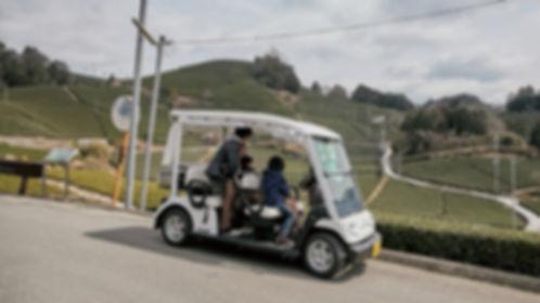 waduka_golfcart.jpg
