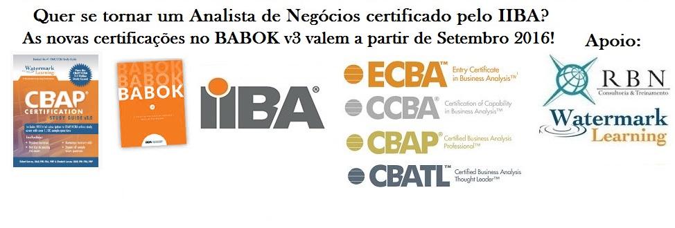 AN e Certificações IIBA