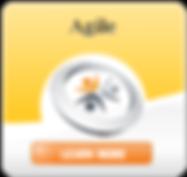 Logo Agile Watermark/RBN