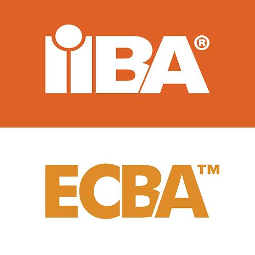 Curso OsD: Preparatório Certificação ECBA