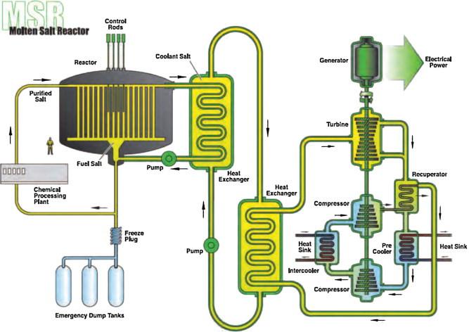 Schematic of a molten salt reactor