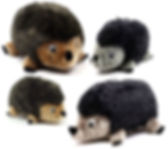 group hedgehogs.jpg