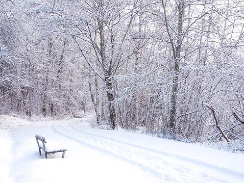 WINTER - Loneliness, frameless photo display (400x600)mm