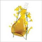 cdro - crude degummed rapeseed oil