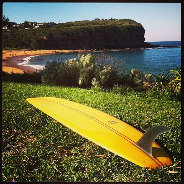 Mona Vale,noserider, surfboard,