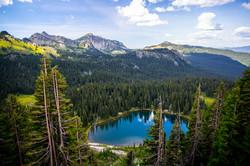 Mount_Rainier-2117