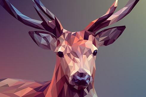 deer-3275594_1920.jpg