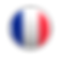 disque-en-sucre-drapeau-francais.png