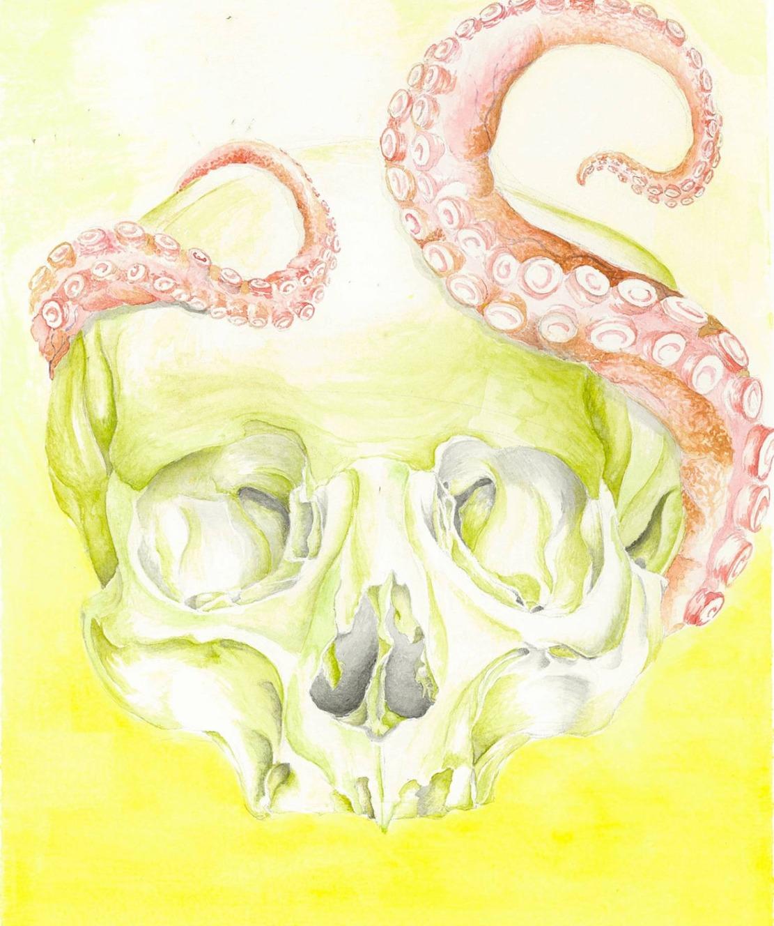 Skoctopus