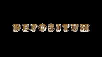 D__E__P__O__S__I__T__U-removebg-preview.png