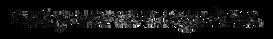 NYAB_LOGO_V1_BLACK 2.png